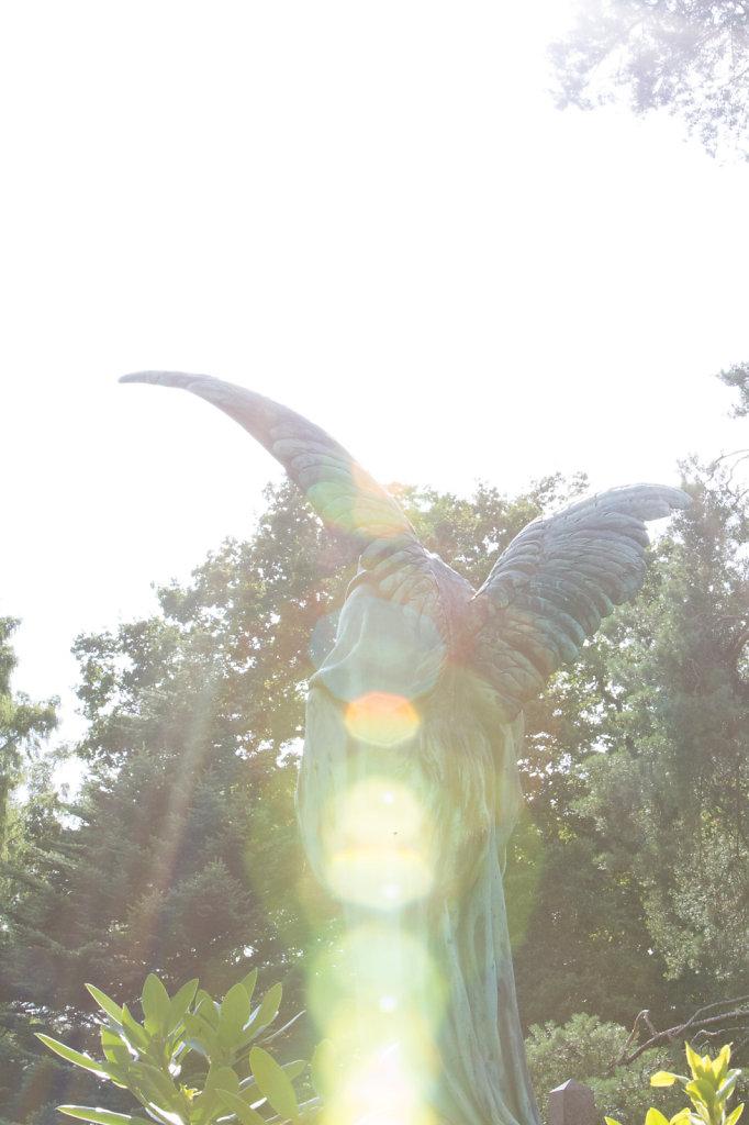 Angel bathing in sunlight