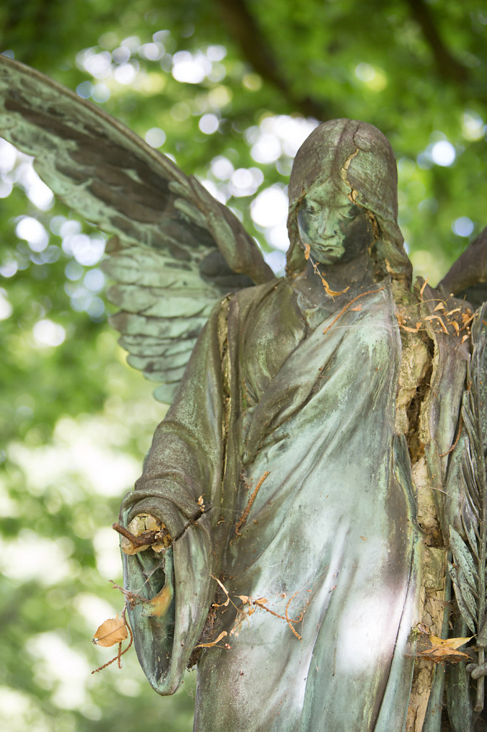 broken angel 1/2